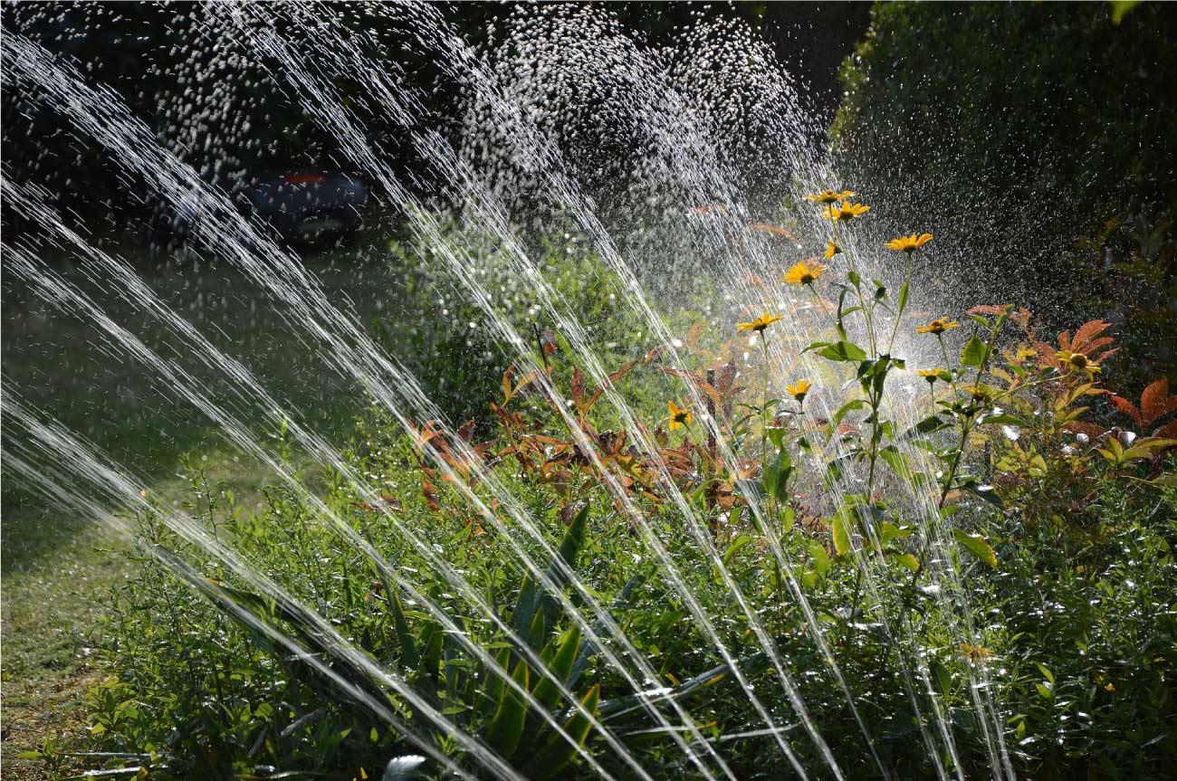 Impianto di irrigazione: perché la consulenza di un giardiniere è importante